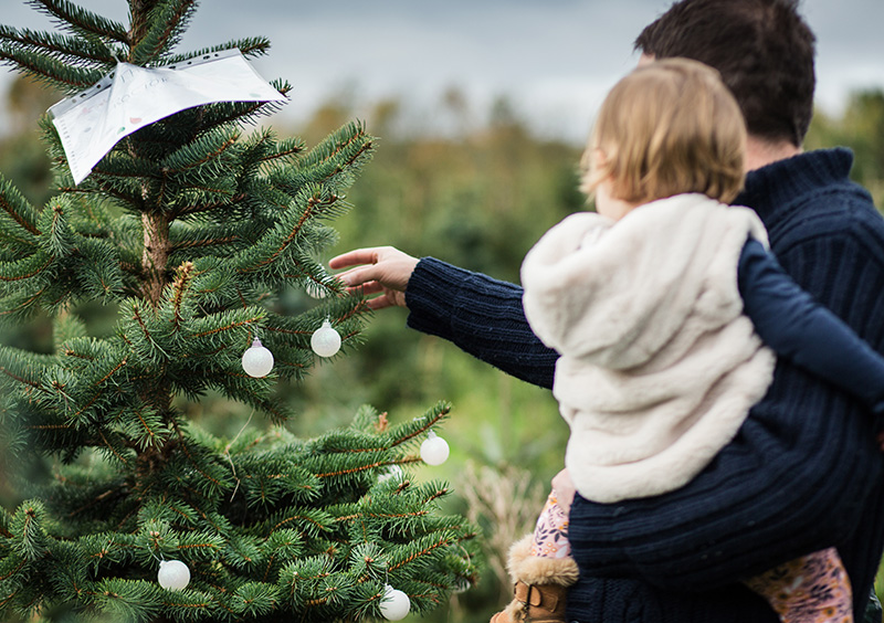 Frenchay Christmas Tree Farm with a family decorating a tree that they will reserve