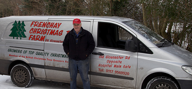 Frenchay Christmas Tree delivery in Bristol